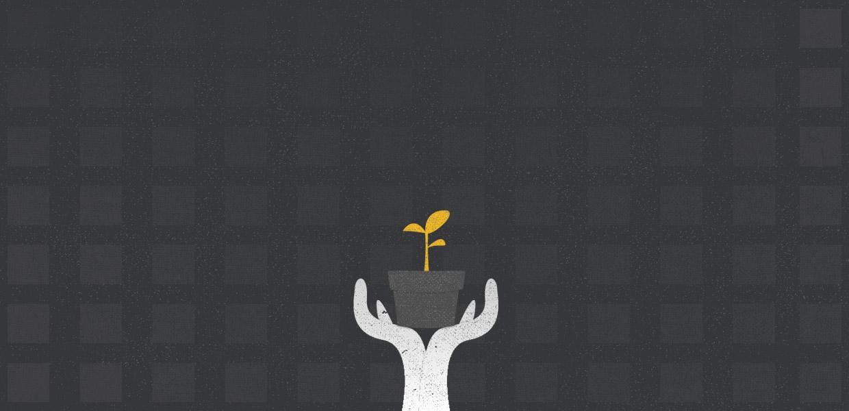 plant_grow